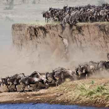 Migrazioni Pericolose