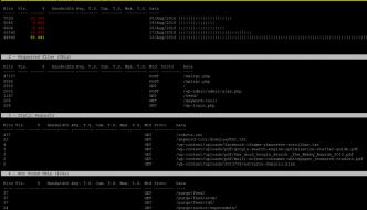 Analisi in tempo reale del log del web server con GOACCESS