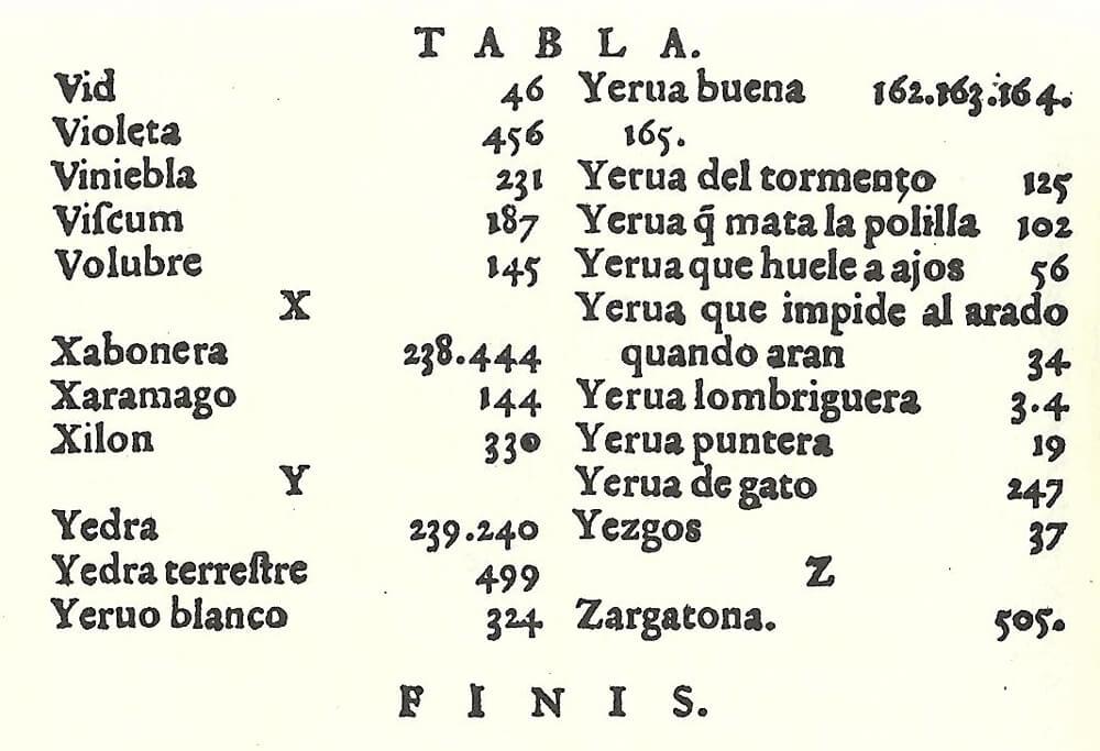 Indice vecchio libro