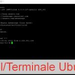 Shell Ubuntu